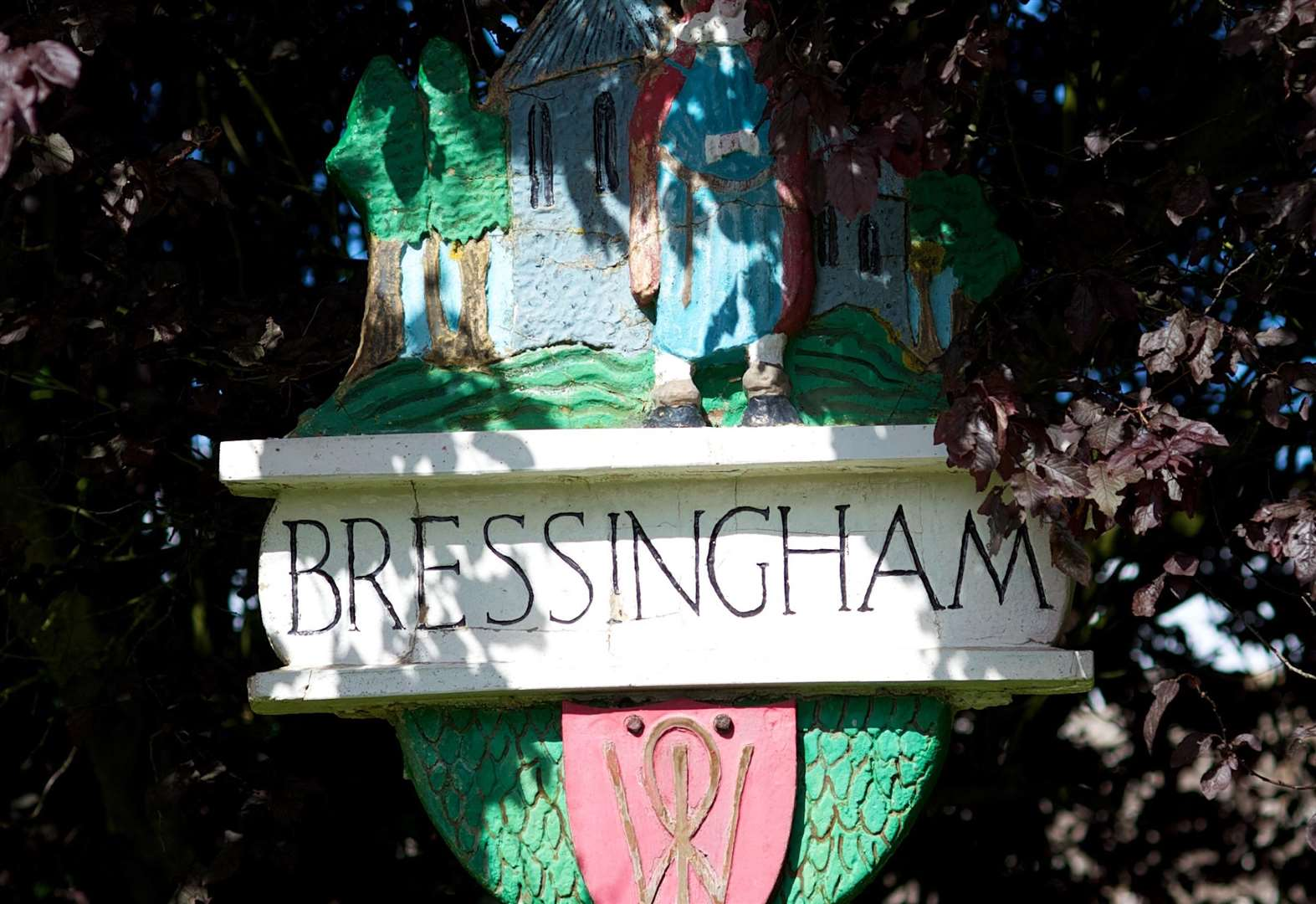 Appeal after Bressingham burglary