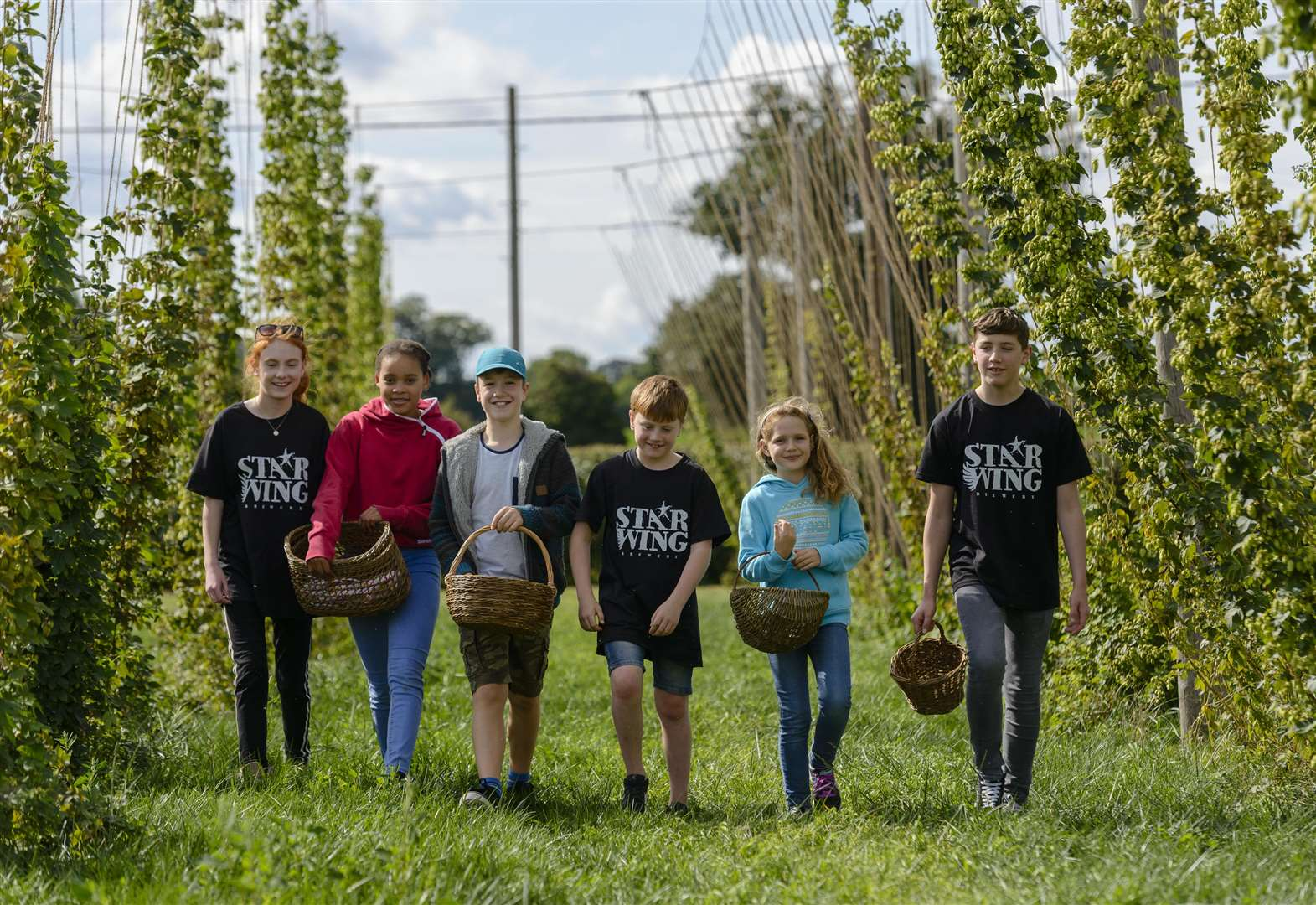 Hop-picking event at Redgrave's Star Wing Brewery