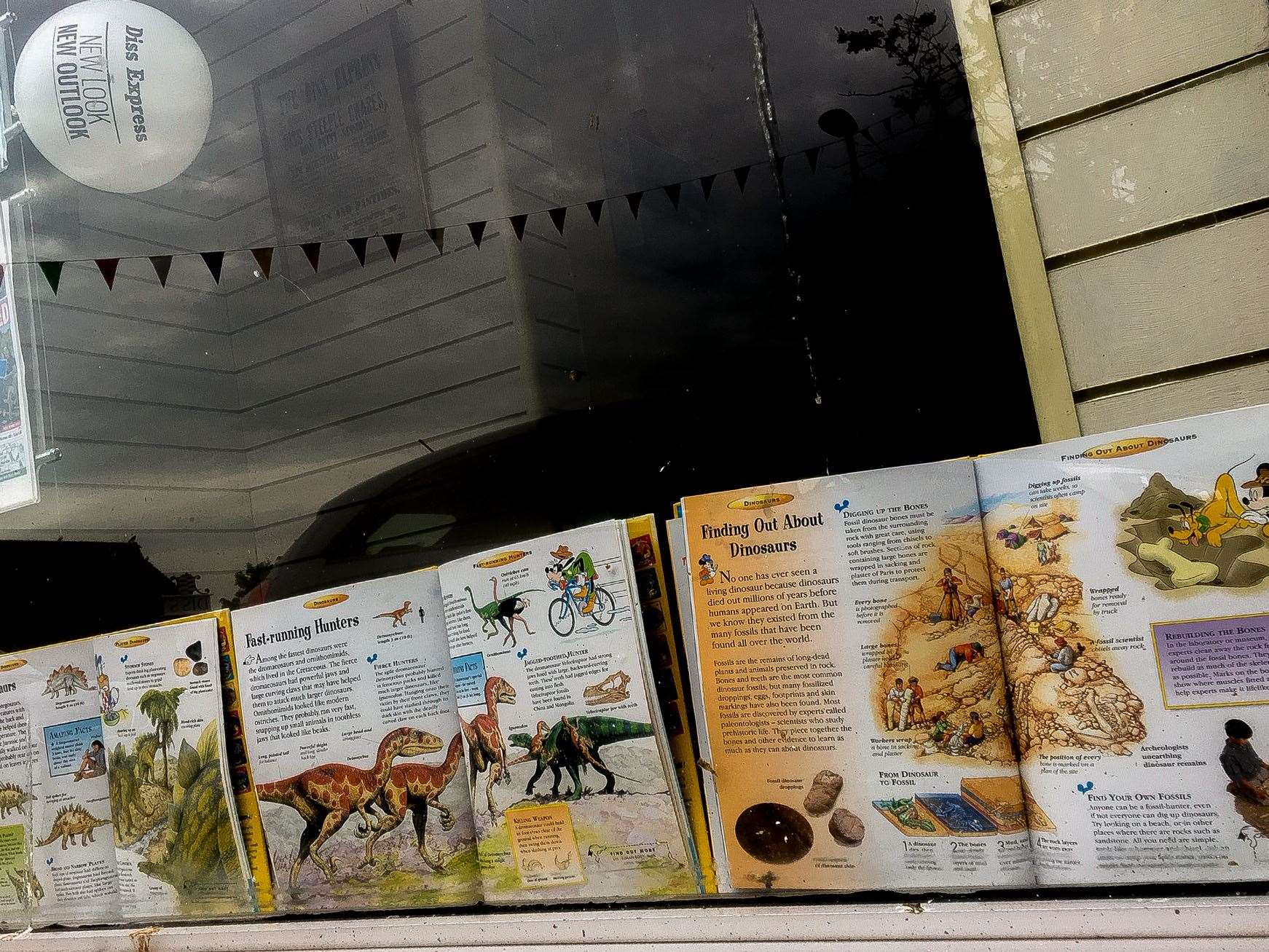 You can read all the latest news about dinosaurs in the front window of the Diss Express office on Mere Street