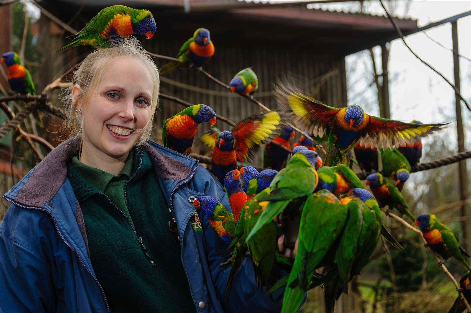 WHO'S A PRETTY BOY?: Michelle Lawrence feeds some lorikeets. Picture by Mark Bullimore Photography.