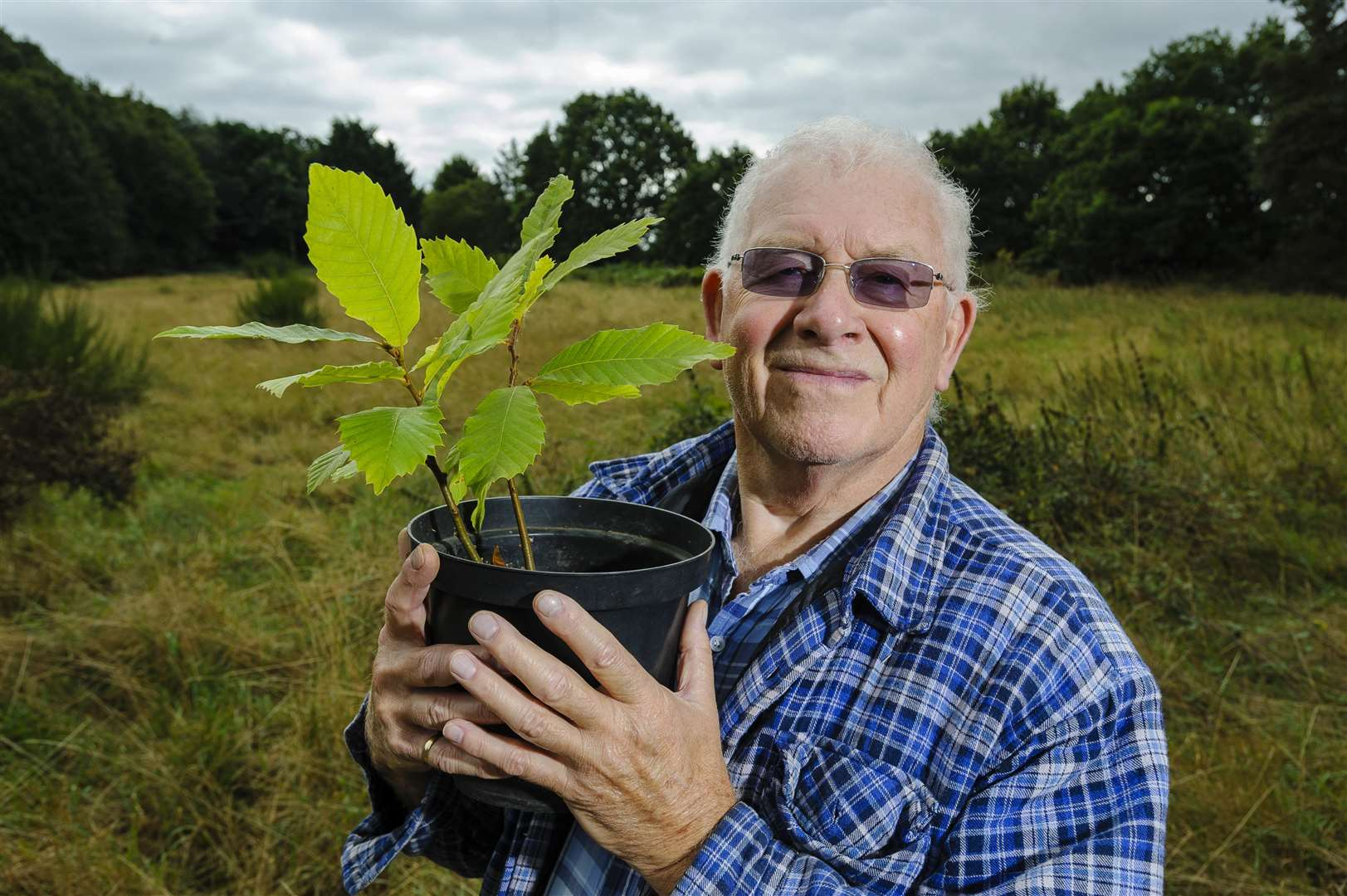 Redgrave tree warden John Preston wants to see more trees planted in the village. Picture by Mark Bullimore.
