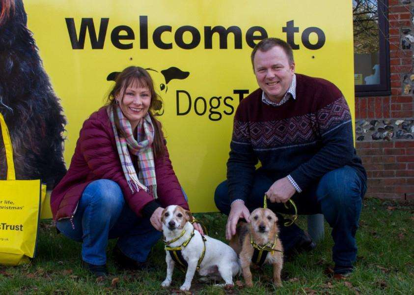 Cross Jack Russels Pebbles and Bam Bam with new owners Alena and Dylan Wren. The two dogs are the 100th rehoming this year by Dogs Trust Snetterton Picture: Contributed.
