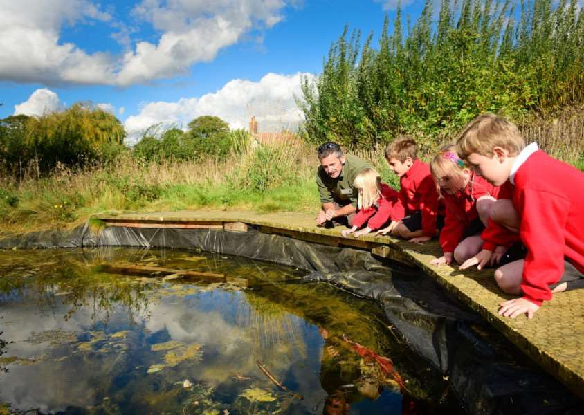 Banham Primary School has officially relaunched its revamped wildlife area. Angela Sharpe Photography