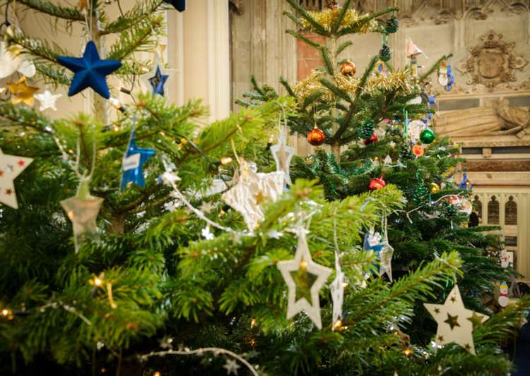 Christmas Tree Recycle Design.Collection Points Open For Mid Suffolk Residents To Recycle