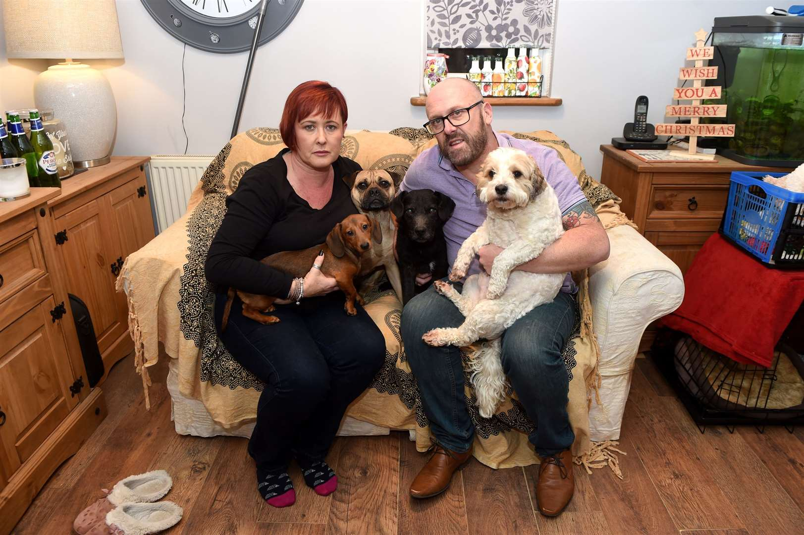 Gillian and Mark Chenery had to take their four dogs to the vet after they ate the poisonous treats. Pictured: Gillian and Mark Chenery with Dolly, Mollie, Rocky and Charlie. Picture by Mecha Morton.