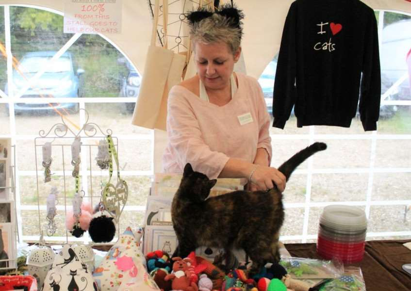Feline Care celebrates its Summer Open Day.