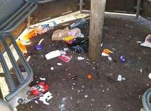 Diss town council released images of shameless littering. Pictures: DTC