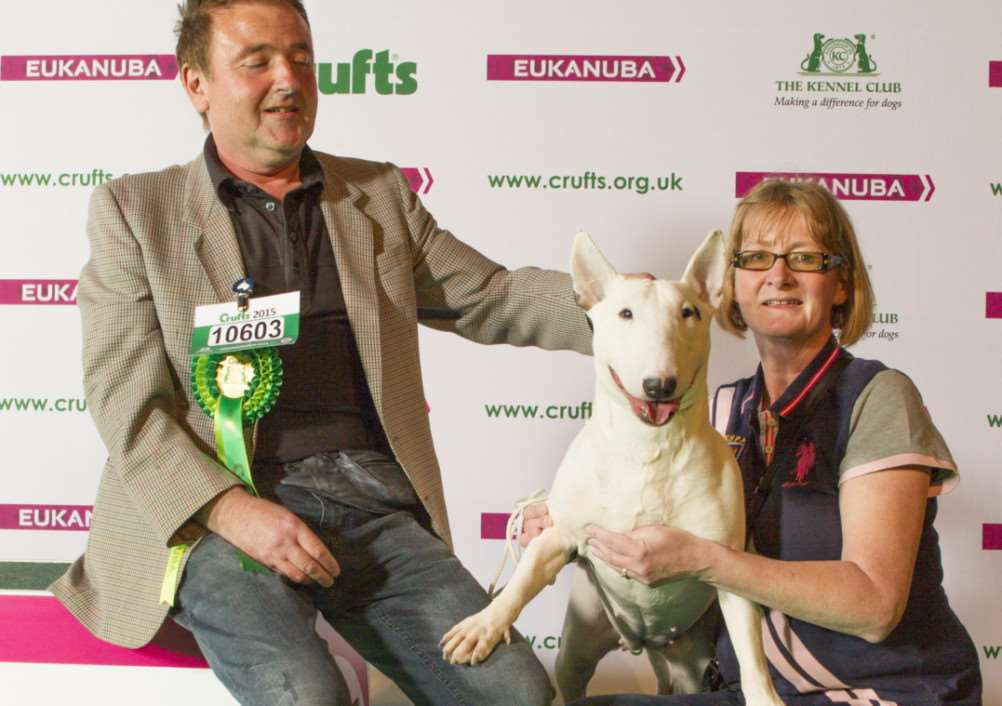 20150307 Copyright onEdition 2015 ?'Free for editorial use image, please credit: onEdition''Picture shows Mark Phillips from Norfolk with Nessa a Bull Terrier, which was the Best of Breed winner today (Saturday 07.03.15), the third day of Crufts 2015, at the NEC Birmingham.''Crufts is the world's largest dog show and was established in 1891 by Charles Cruft. This year will see more than 22,000 healthy, happy dogs enjoying competing for the coveted 'Best in Show' title. Crufts 2015 runs from the 5th to the 8th March 2015 at the NEC, Birmingham.''Crufts is the perfect opportunity for dog lovers to find out even more about the range of schemes, activities and events that they can get involved in, to ensure that they and their dog have a long, healthy and fulfilling relationship from puppy-hood, all the way through their lives!''For more information please contact the Press Office via: T: 020 7518 1008 / 1020'E: press.office@thekennelclub.org.uk''For additional images, press releases, video or audio content ple