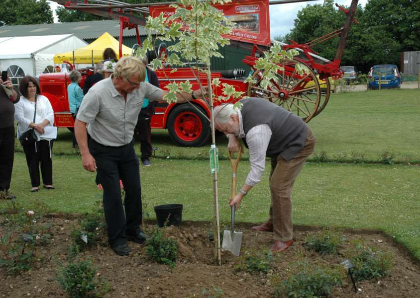 Dad's Army star Ian Lavender plants a tree at the festival. ANL-150624-115008001