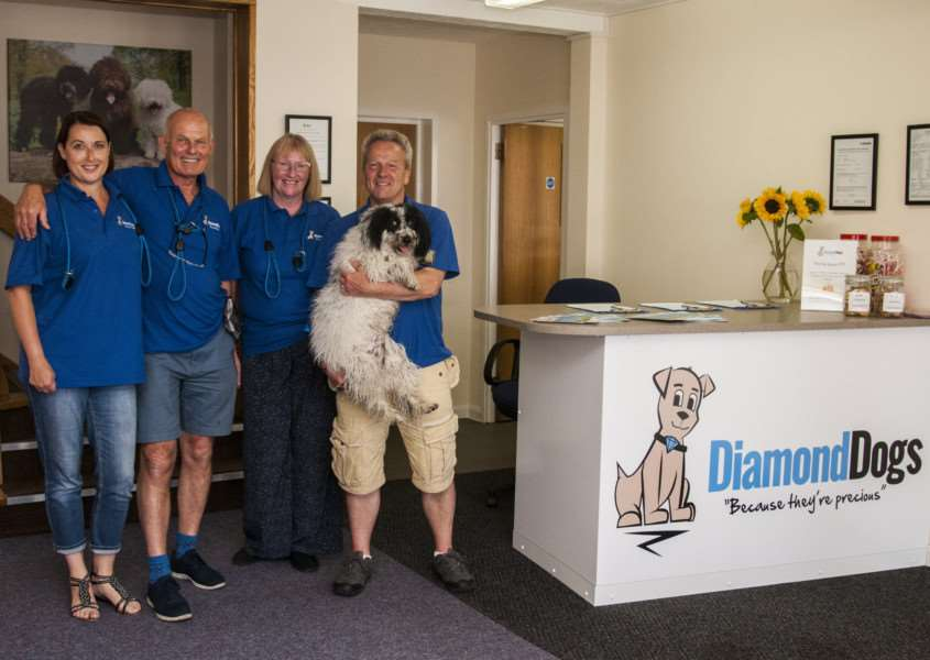 Diamond Dogs Canine Creche Ltd, Yaxley, Eye Airfield, Eye