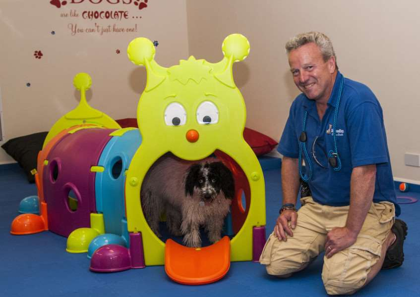 Diamond Dogs Canine Creche Ltd, Yaxley, Eye Airfield, Eye. Owner Graeme Cowey with Ziggy the dog.