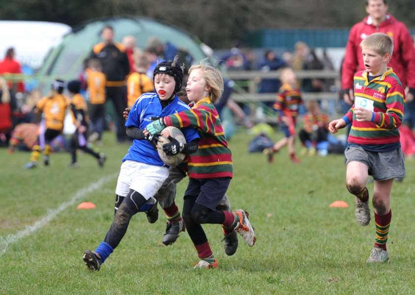 RUGBY FESTIVAL: Diss Rugby Club Under-12s Black team were undefeated in the Mini Rugby Festival which was held at their Mackenders ground on Sunday